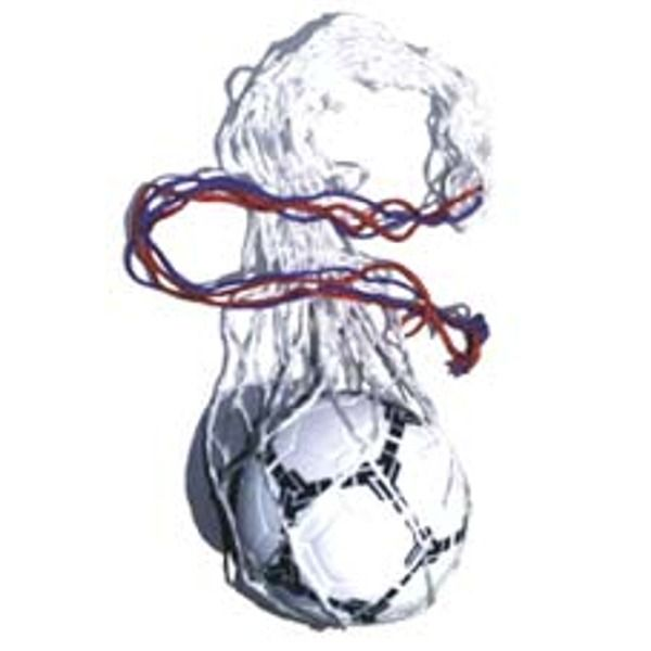 10 Soccer Ball Carry Net - model 958